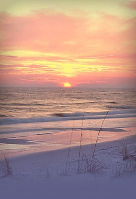 Gulf Shores, Alabama I just took a vacation here over Christmas break! Wonderful vacation spot