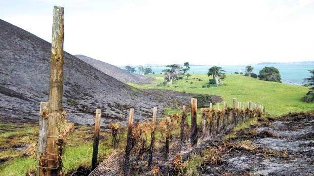 Чтобы привлечь внимание спасателей, женщина чуть не спалила половину острова