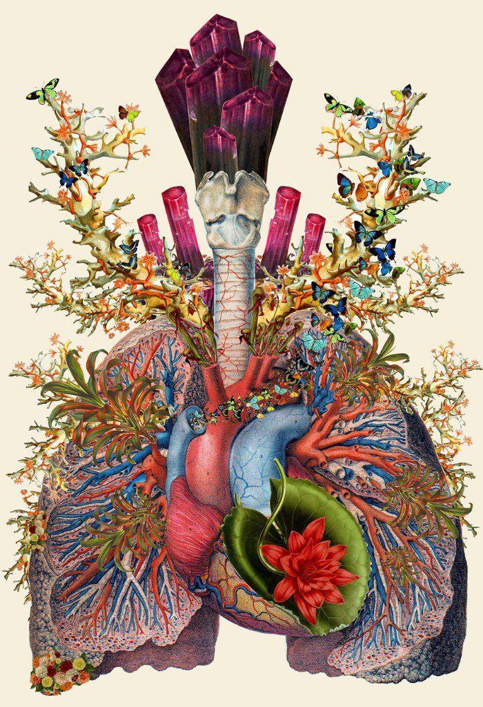 El cuerpo humano hecho en collages, por: Travis Bedel