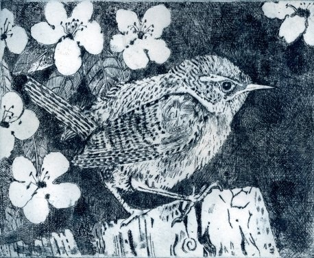 """Janis Goodman - """"My etchings are preoccupied with repetitive patterns formed by roofs, windows and other formal elements and how they contrast with the organic forms of plants and birds. The work is both detailed and atmospheric using line and aqua-tint to give tone and shading to the prints."""""""