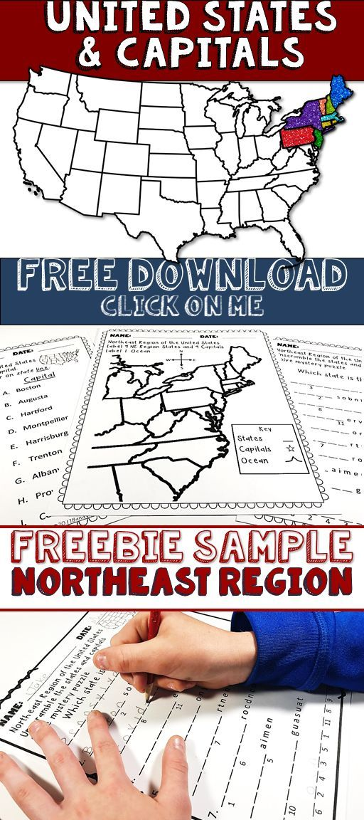 United States & Capitals Northeast Region Freebie Sample for your elementary social studies classroom review.