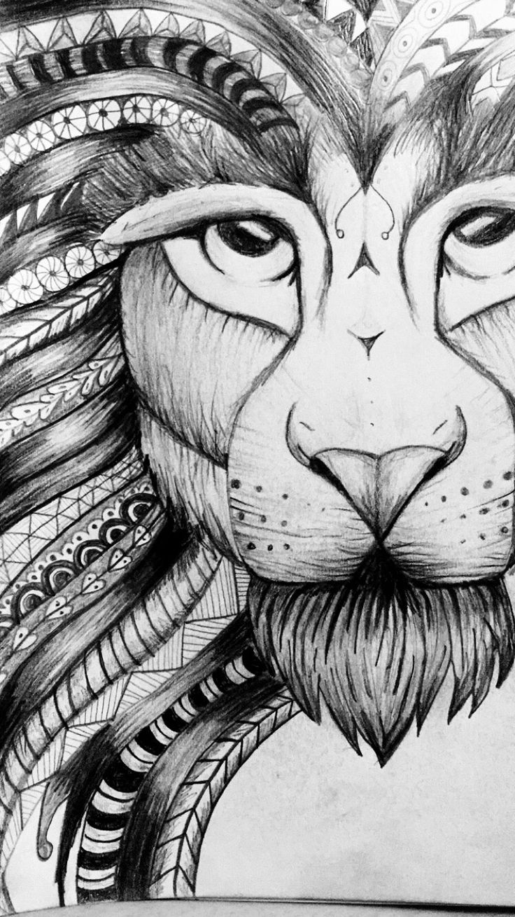 82 best lions images on pinterest drawings lion art and lion
