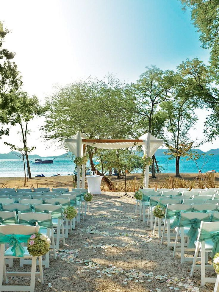 all inclusive beach wedding destinations%0A Enchanting El Mangroove  u     Say  u   cI do u   d at this incredible beach   forest wedding  venue