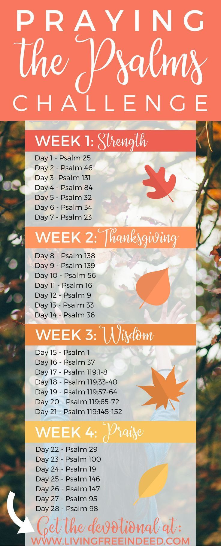 Best 25 Thanksgiving Bible Verses Ideas On Pinterest
