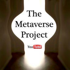 The Metaverse Project