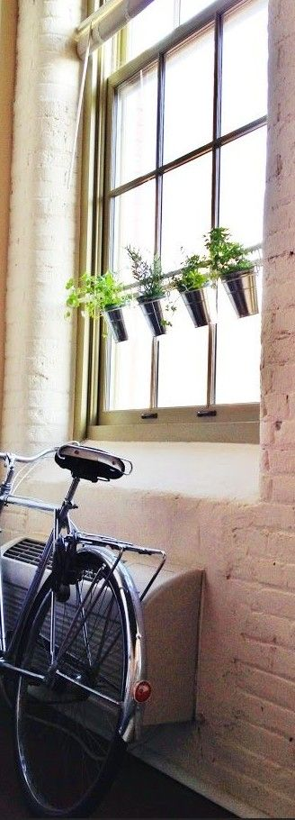 Window Herb Garden – IKEA Hack! Use a tension rod and some S hooks to create a hanging herb garden in any window frame / JILLM