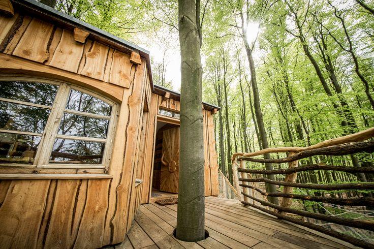 Wie wäre es mit einer Wohnung im Baum? www.robins-nest.de ...
