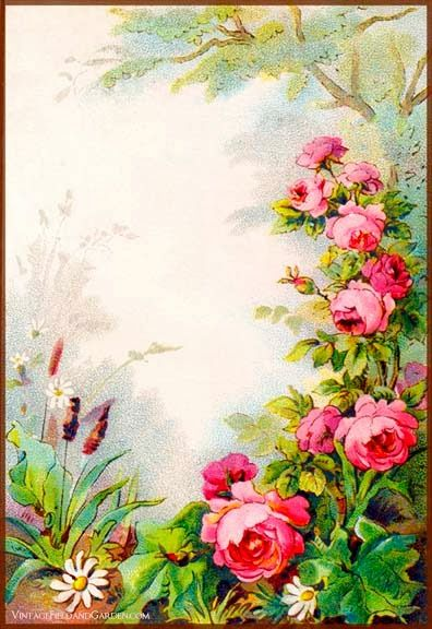Vintage Field & Garden: Illustrated Border: Flowers in a Victorian Cottage Garden Gift Tag (#2 of 6)  *DL*