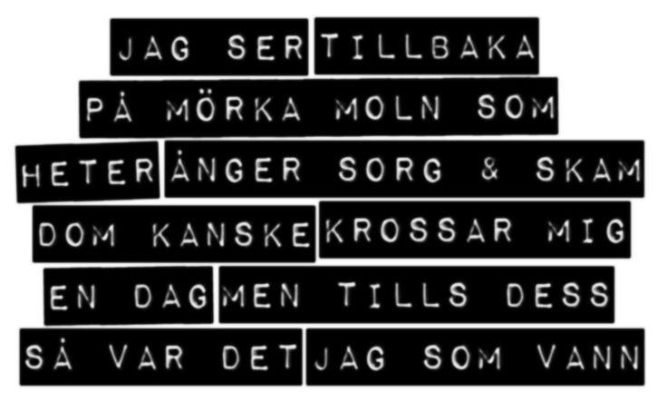 MARKUS KRUNEGÅRD: