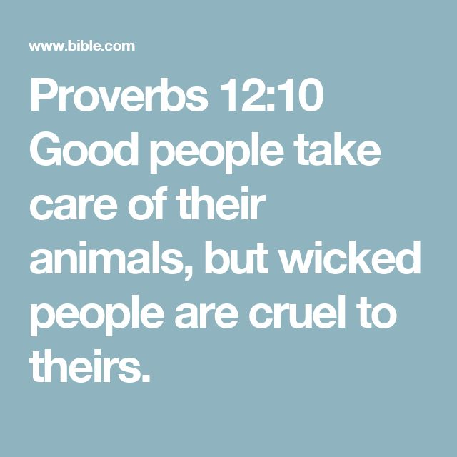 Proverbs 12:10 Good people take care of their animals, but wicked people are cruel to theirs.