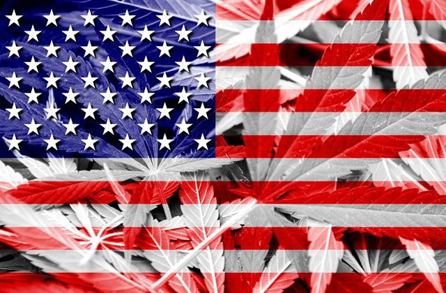 What Does Super Tuesday Mean for Cannabis Legislation?