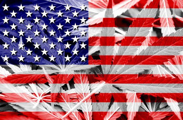 What Does Super Tuesday Mean for Cannabis Legislation?