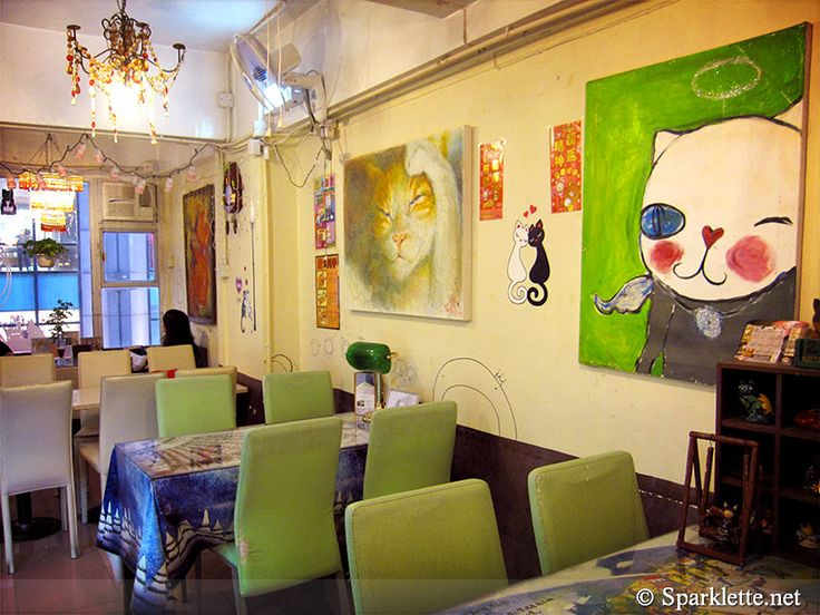 #HongKong #HK #travel #catcafe  Ah Meow Cat Café 啊貓地攤 (previously known as Choco Cat Café)