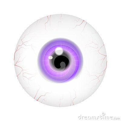 Image of realistic human eye ball with colorful pupil, iris. Vector illustration  on white background