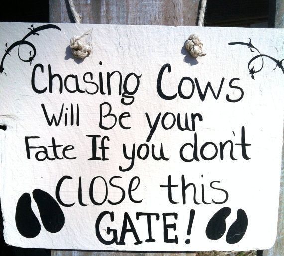 Farm Sign, Cow Sign, Gate Sign, Funny Signs, Yard Decor, Ready to ship by marina