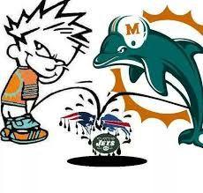 Resultado de imagem para miami dolphins