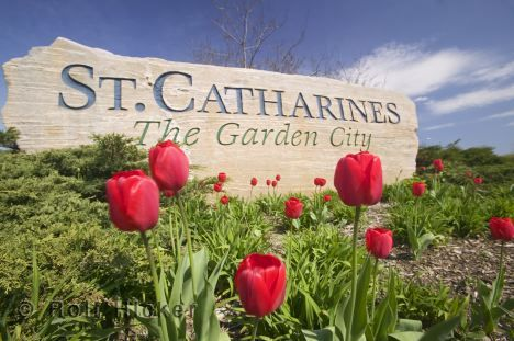 I have lived in St. Catharines most of my life since age 15. I loved living in the falls though.