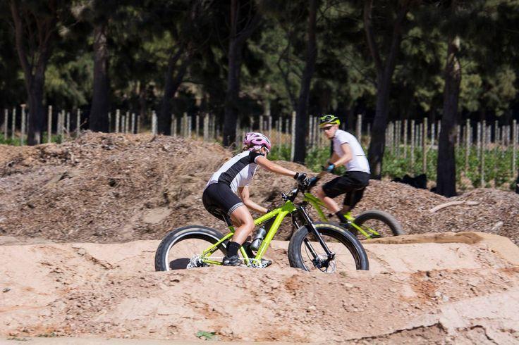 Fat biking fun at the Constantia Uitsig trail park