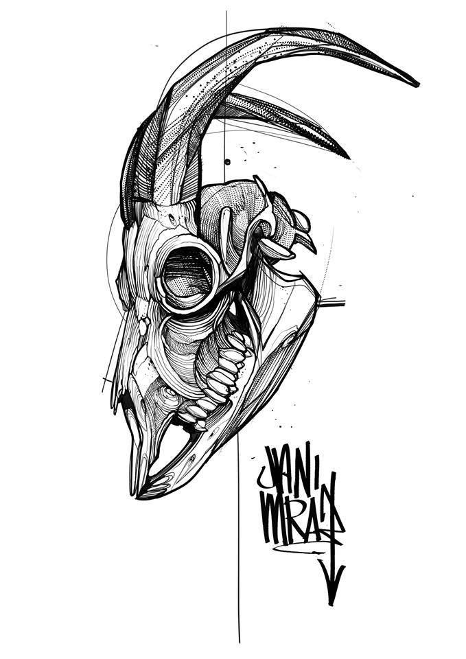 Image Result For Animal Skull Tattoo Animal Skull Tattoos Animal Skulls Tattoo Designs Men