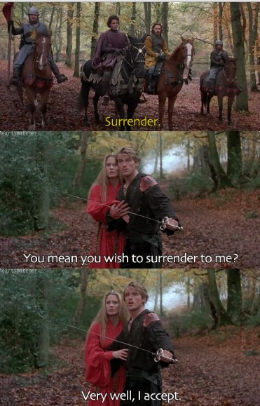 The Princess Bride. Okay, I think I need to watch this movie again amd again and again and again