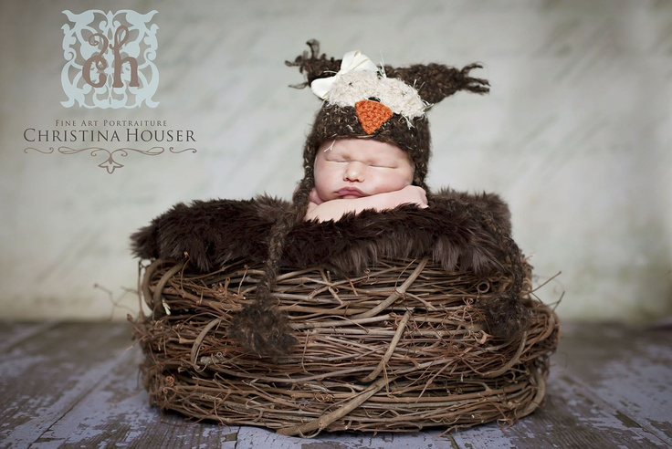 Chocolate Brown Mongolian Fur Nest Photography Prop Rug Newborn Baby Toddler 27x20. $34.00, via Etsy.