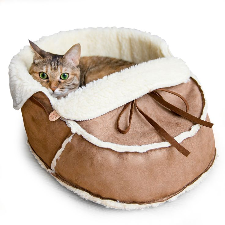 Cat Sofas Cat Furniture Sofas Real For Cats In Dreamy ...