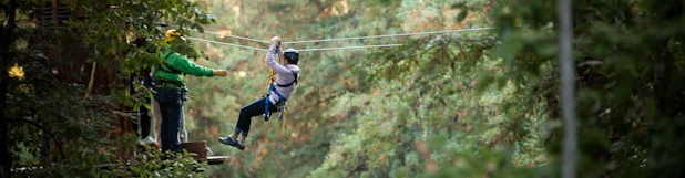 Did this Redwood Canopy tour last August.  Spectacular!  I would go every day if I could.  Mt. Hermon Redwood Canopy Tour in Santa Cruz, California
