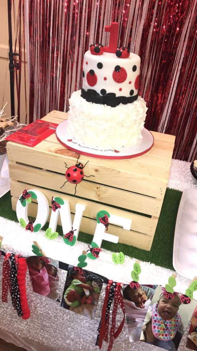 Ladybug birthday cake  twin girls