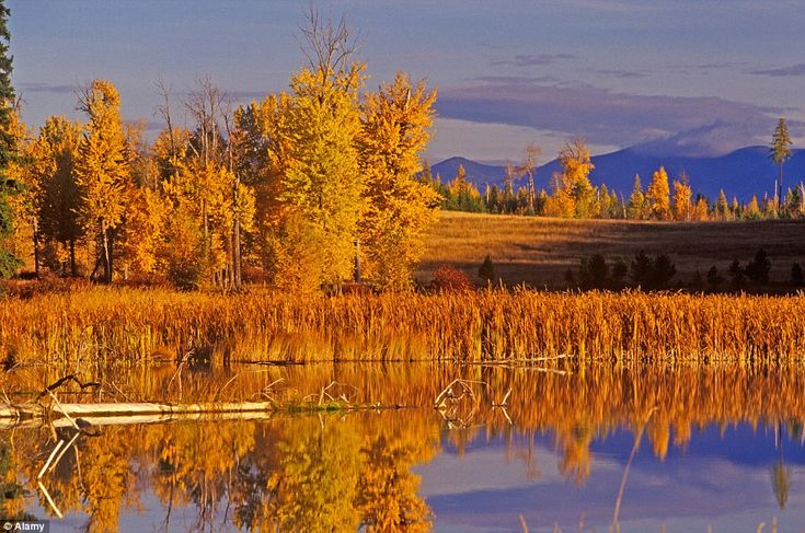Chinook Lake, near Whitefish, Montana, which is the gateway to Glacier National Park, is a...
