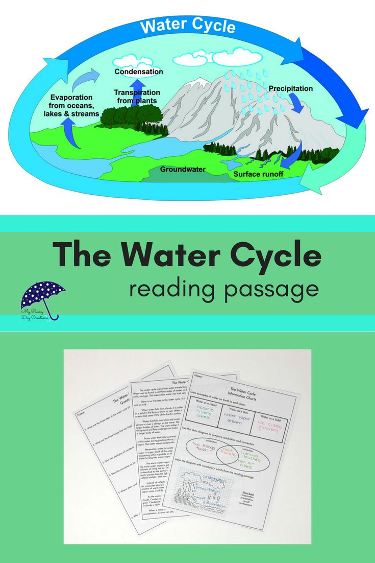 Are you teaching the water cycle to upper elementary or middle school students? This short reading passage teaches the steps of the water cycle and introduces new vocabulary words such as photosynthesis, convection, and conduction as they relate to the water cycle. A worksheet, reading questions, and a vocabulary page are also included. Click to check it out!