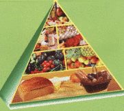 Albania uses a food pyramid representing six food groups: cereals at the bottom of the pyramid; fruits and vegetables on the second level; dairy products and animal source foods on the third level; and fats and products high in sugar and fat at the top.