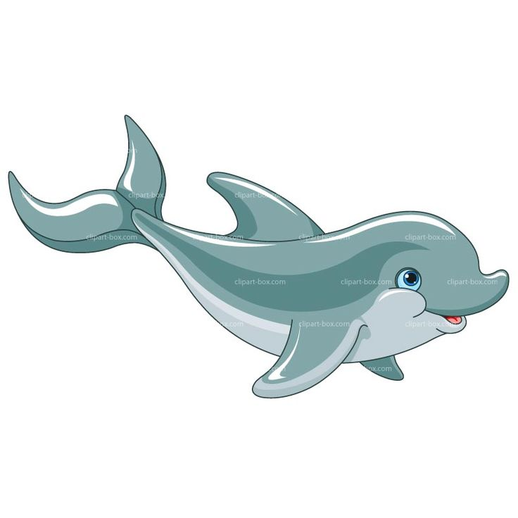 CLIPART DOLPHIN | Royalty free vector design
