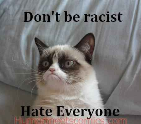 But, she is not racist ;) | 14 Hilarious Grumpy Cat Memes That Will Make You Smile