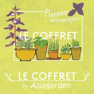 Le coffret de graines «Plantes aromatiques » comprend 10 variétés différentes que vous pourrez cultiver aisément au jardin, sur votre balcon, sur un rebord de fenêtre ou dans votre cuisine. Cette sélection de plantes aromatiques apportera de nouvelles saveurs et de la couleur à vos plats !