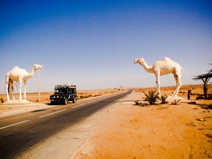 Western Sahara gateway