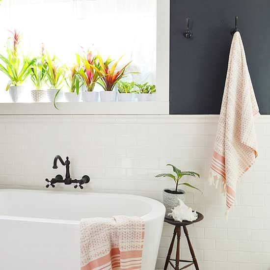 If your houseplants are struggling, gather them up and put them in the tub.