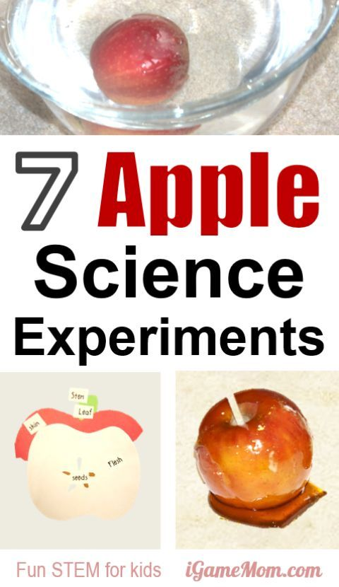 Translations Into Italian: 4162 Best Kids Science Activities Images On Pinterest