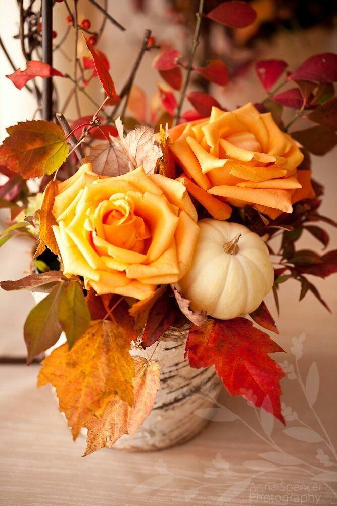 красивые осенние цветы картинки вертикальные жанру