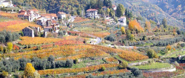 Enchanting Medieval Village Home