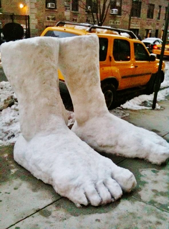 big feet appeared in NY