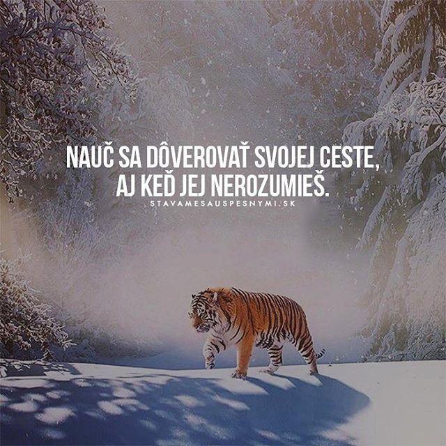 Tak tak WEB NA @stavamesauspesnymi_sk #stavamesauspesnymi_sk #úspech #cesta #dôvera #viera