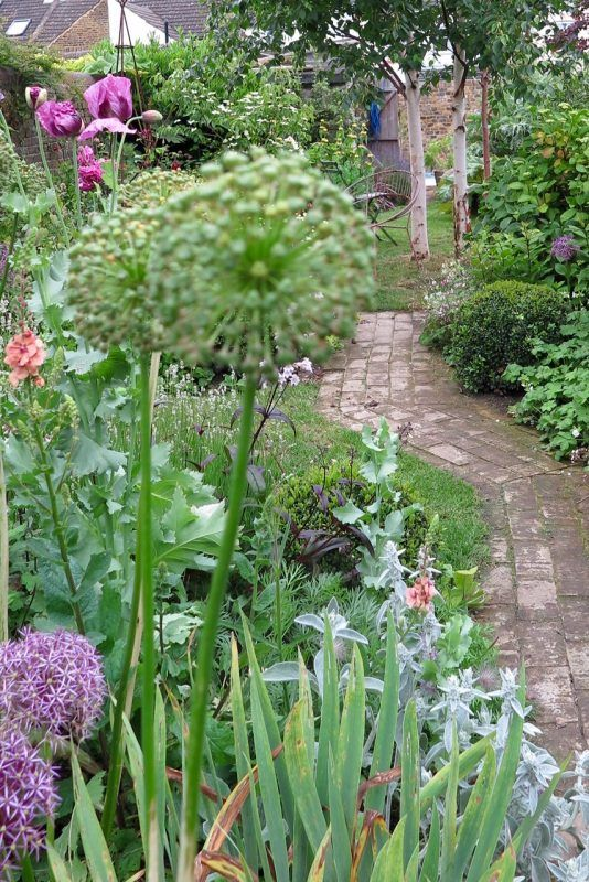 the 25 best narrow garden ideas on pinterest small gardens side gardens and small garden design