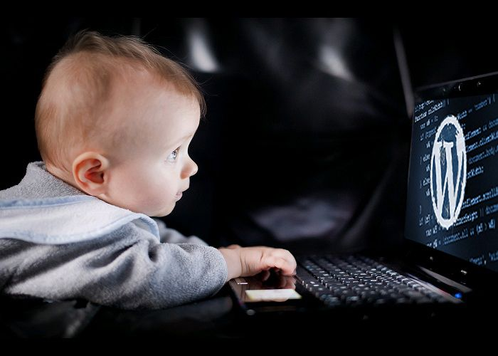 CMS WordPress, wordpress, world press, wp themes, вордпресс, wordpress https, wordpress скачать, wordpress news theme, wordpress demo, wordpress for android, wordpress шаблоны, шаблоны wordpress,