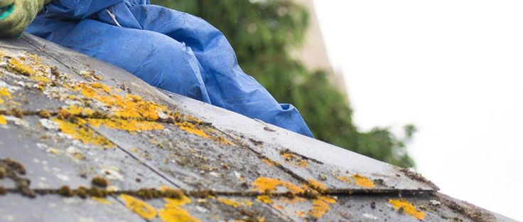 We are the best in the business as far as asbestos removal is concerned. Our team is well equipped to ensure that the services given are up to standard and affordable. To get the best services from a professional and friendly team at an affordable cost.
