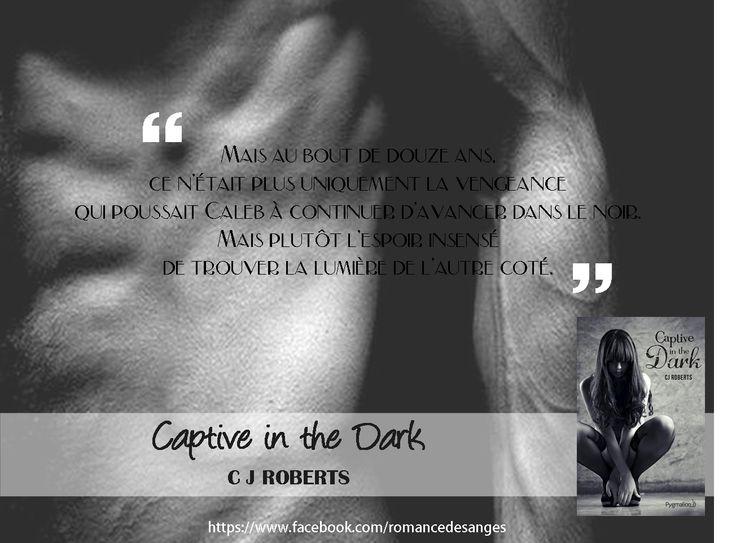 Captive in the dark - C.J Roberts