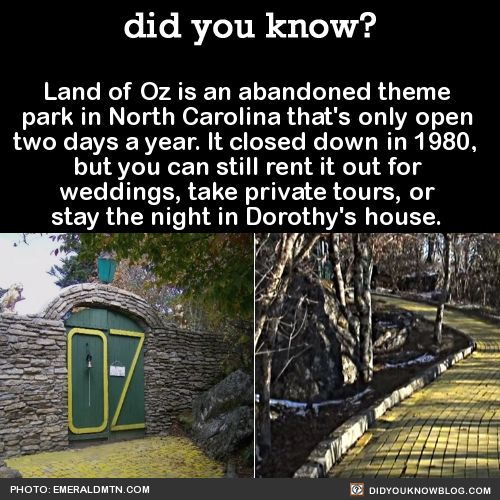 The Land of Oz is an abandoned theme park in NC. You can still rent it out for weddings, take private tours, or stay the night in Dorothy's house