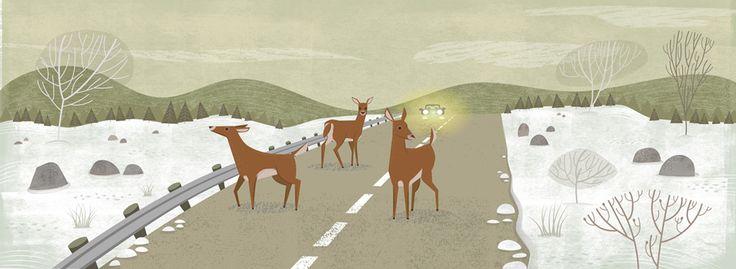 Highway 15, #deer, #danger, #road, #wildlife, #winter, #silence