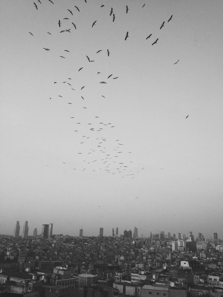 fly away from this city :/  İstanbul...