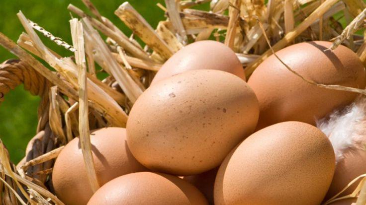 Kan ik eieren invriezen? | VTM Koken