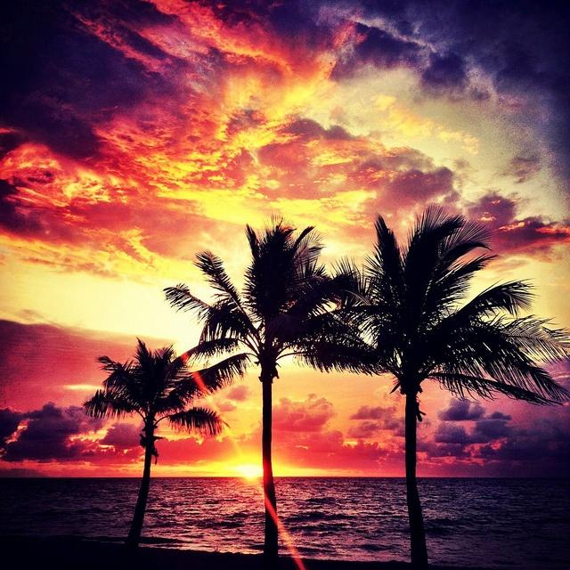 17 Best Images About Destination Fort Lauderdale Florida